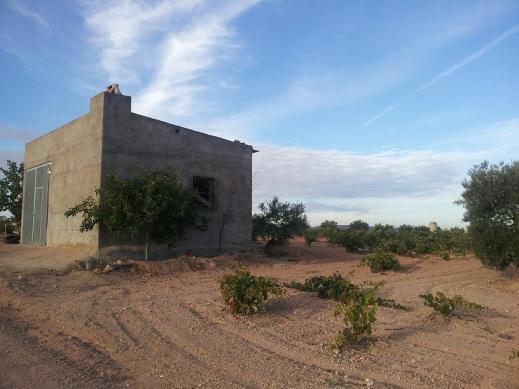 edificación rural