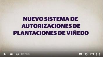 Nuevo Sistema de Autorizaciones de Plantaciones de Viñedo