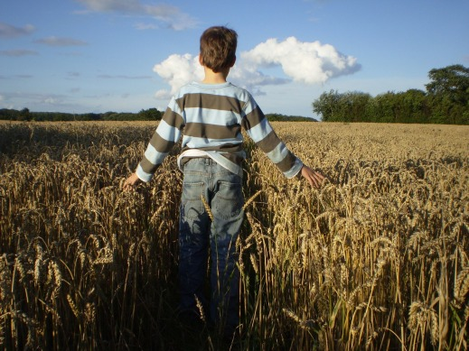 ayudas a la agricultura ecológica