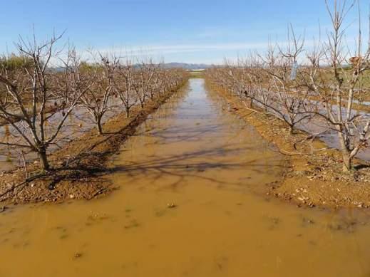Ayudas Seguro Agrario Castilla-La Mancha 2017