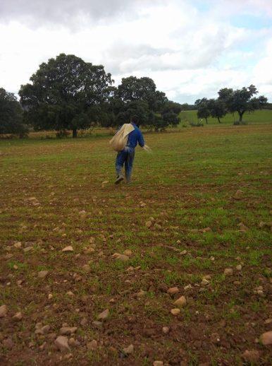 Cotización a la Seguridad Social Agraria