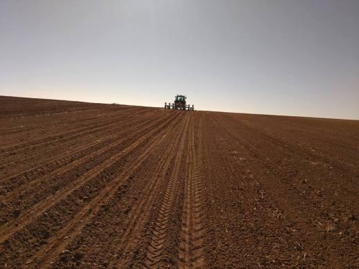 Seguridad Social Agraria Gasóleo Agrícola