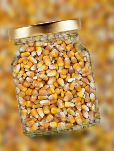 importación de maíz