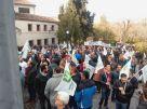 18 04 05 Manifestación toledo Plaga Conejos (9)