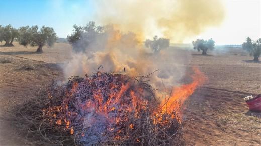 quemas agrícolas rastrojos