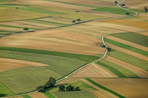 Concentración Parcelaria Castilla-La Mancha