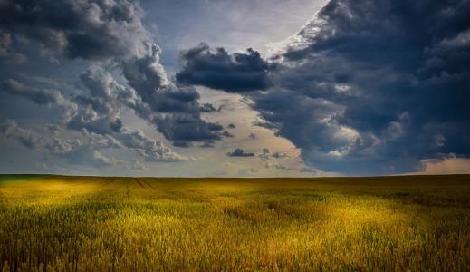 Sequía Seguro Agrario