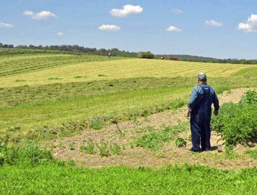 Reforma de la PAC agricultor genuino