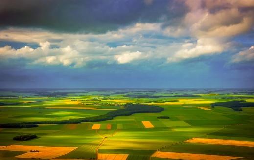 Diversificación de cultivos (2)