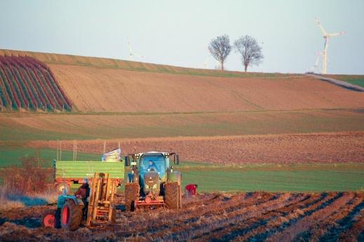 Agricultura SMI