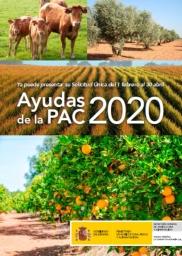 novedades PAC 2020