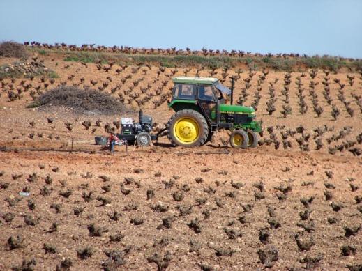 ITV maquinaria agrícola ITEAF