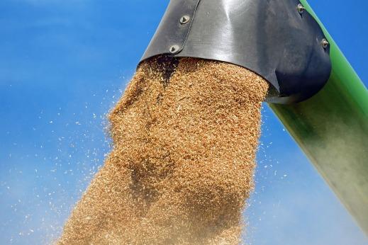 Campaña de cereales