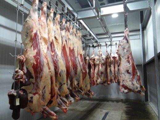 ayudas almacenamiento privado ganadería